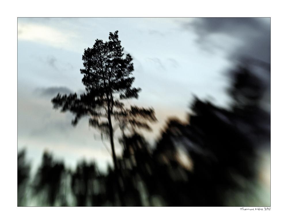 Lens - Lession - N° 10