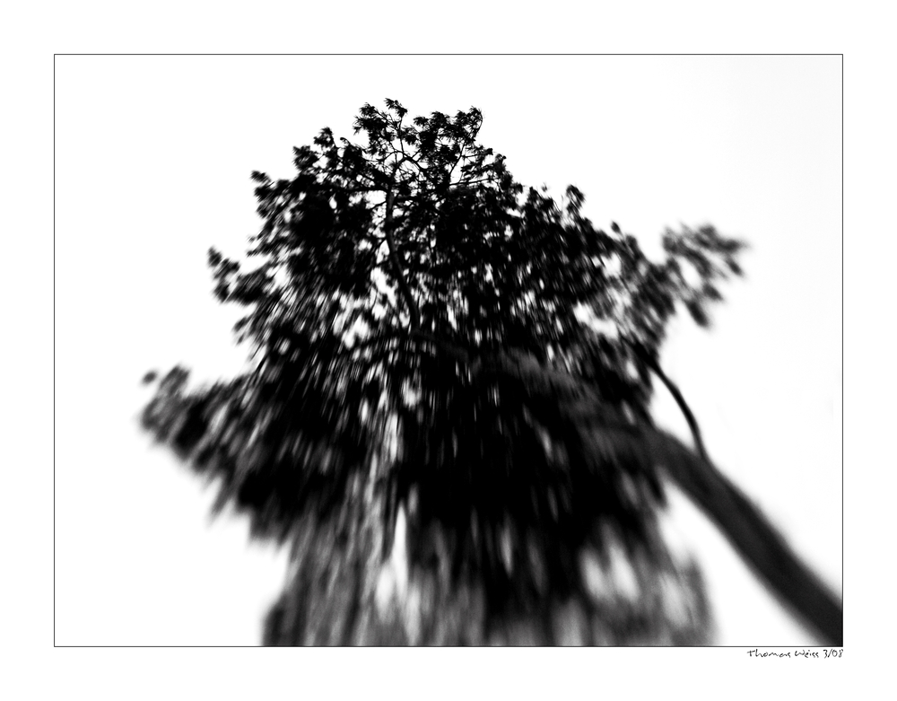 Lens - Lession - N° 2