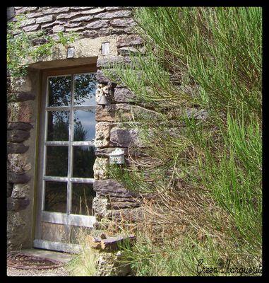 L'entrée du moulin...