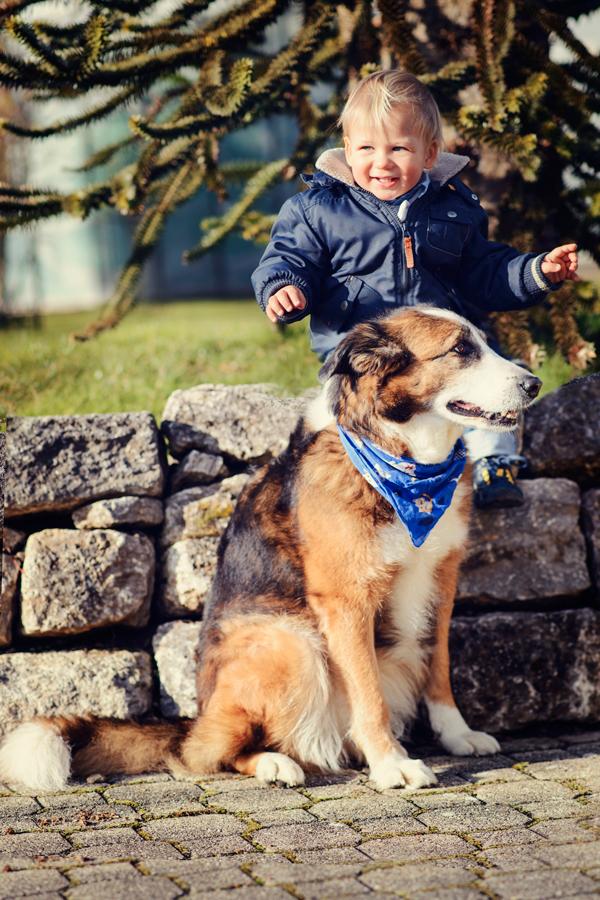 Leo und sein Wachhund