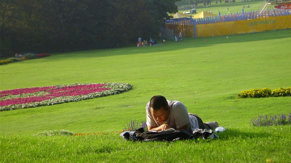 Lernen in der Rheinaue