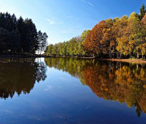 les 1000 étangs dans les Vosges