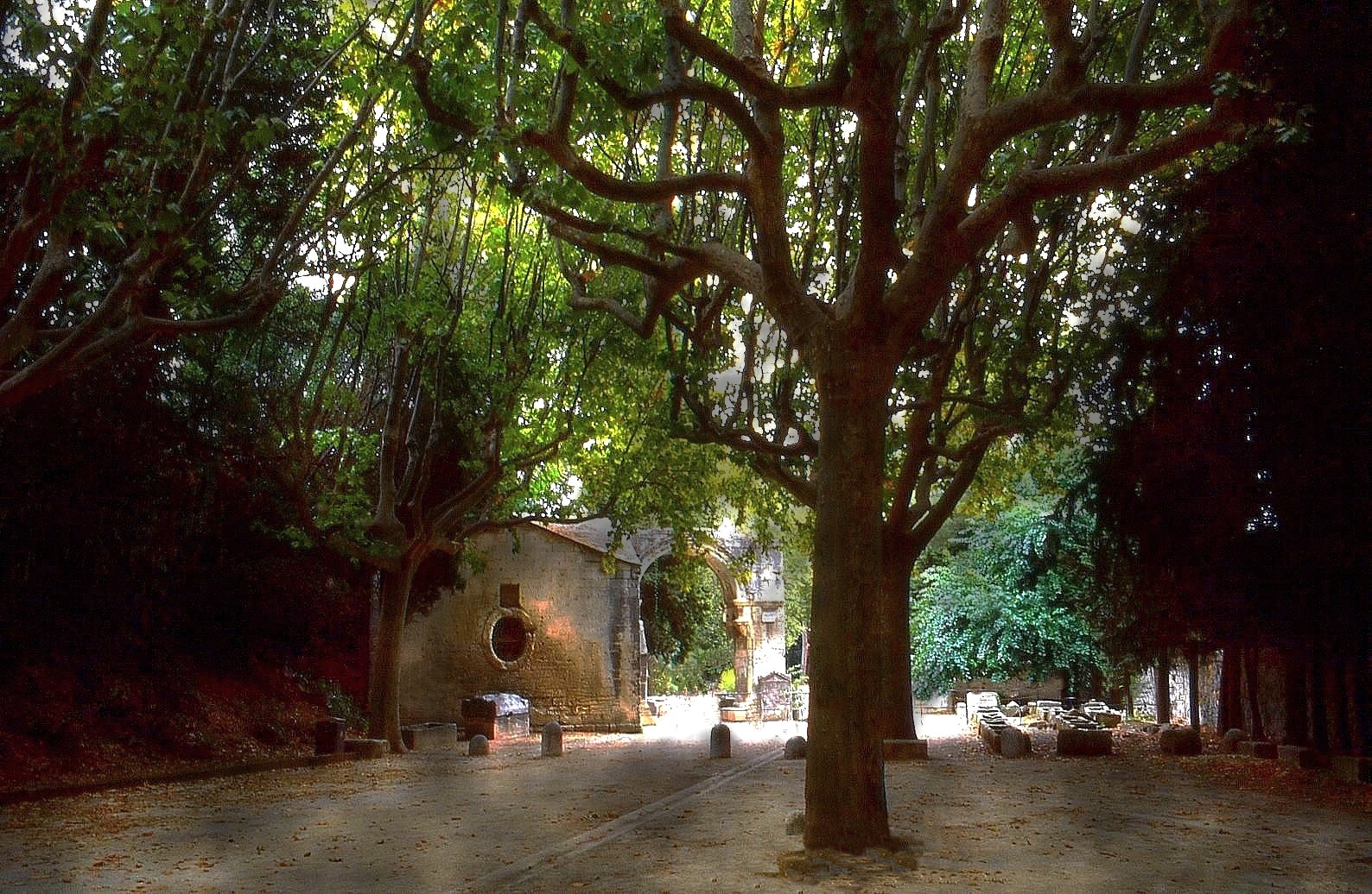 Les Alyscamps Arles