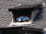 les amoureux qui se bécotent sur les toits publics