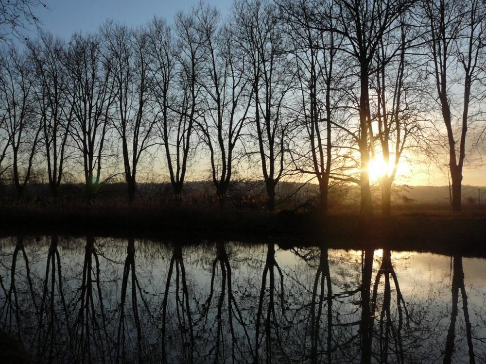 les arbres, le canal et le soleil