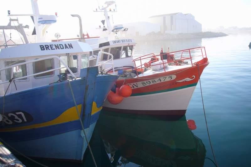 les bateaux de peche à guénolé