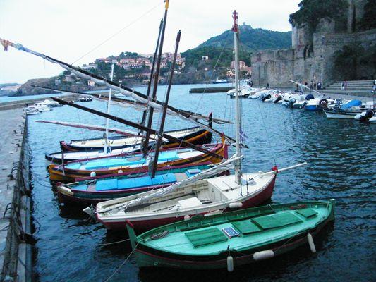 les belles catalanes de collioure