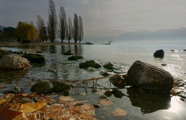Les bords du lac Léman