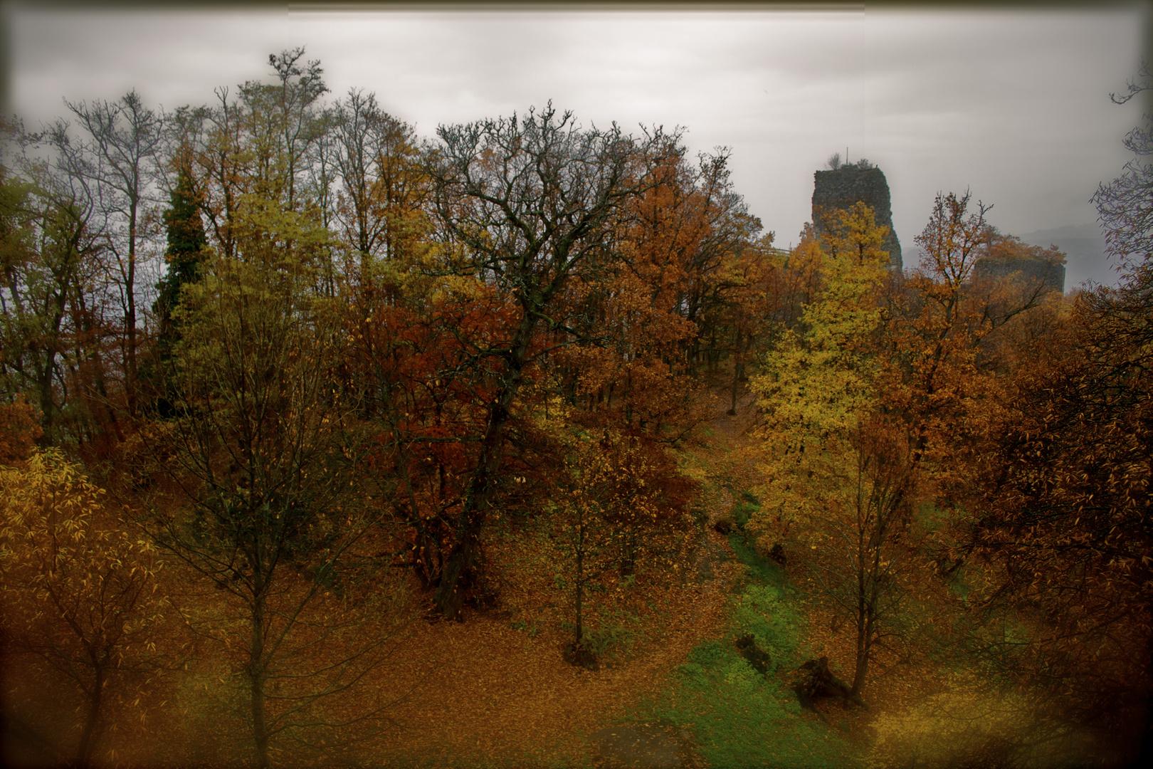 Les Chateaux d'Allinges -