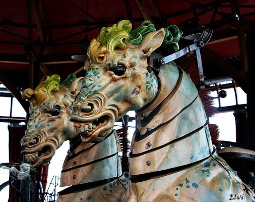 Les chevaux marins (sortis de leur affiche)