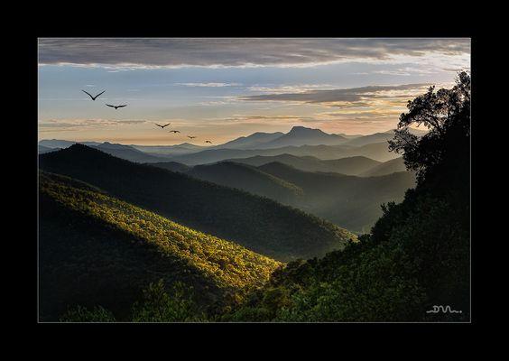 Les collines de Provences