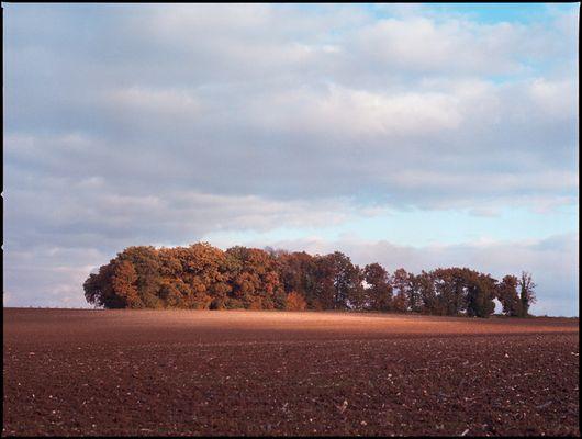 Les couleurs de l'automne (1)
