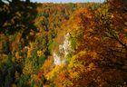 Les couleurs de l'automne #2