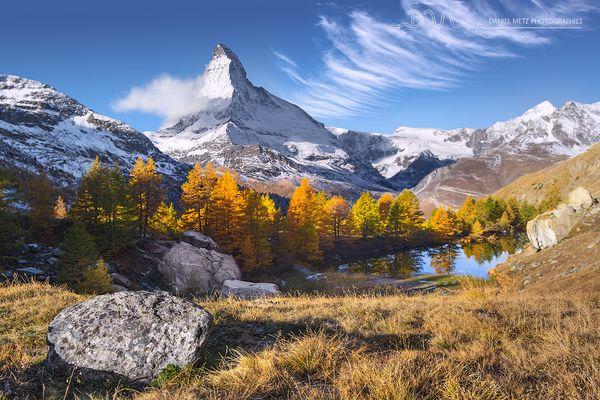 Les deniers jours de l'automne