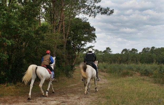Les deux cavaliers...
