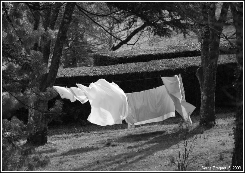 Les draps au vent