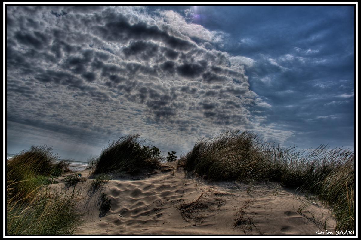 Les dunes de Beauduc en Camargue