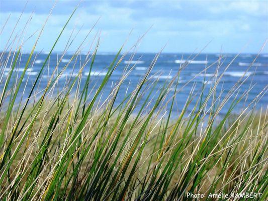 Les dunes de Keremma