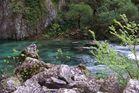 Les eaux sauvages