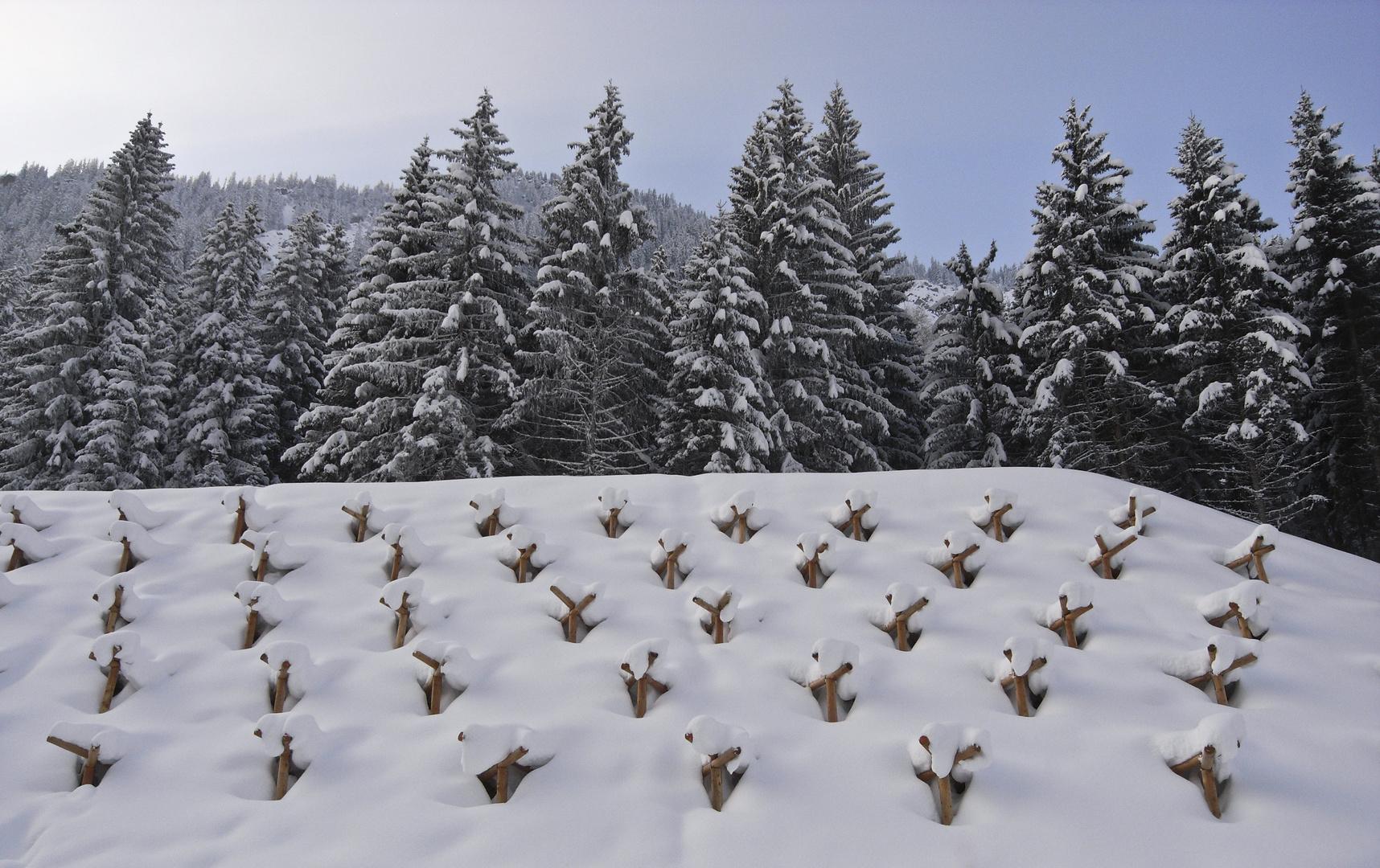 les effets de la neige...