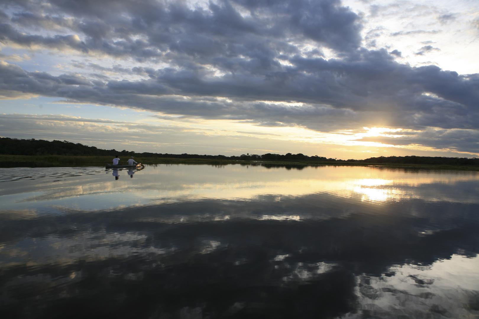 les étangs du pantanal