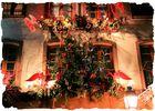 les fenêtres de Noël!