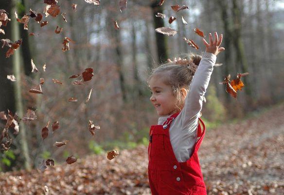 Les feuilles et Elsa