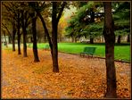 Les feuilles mortes......