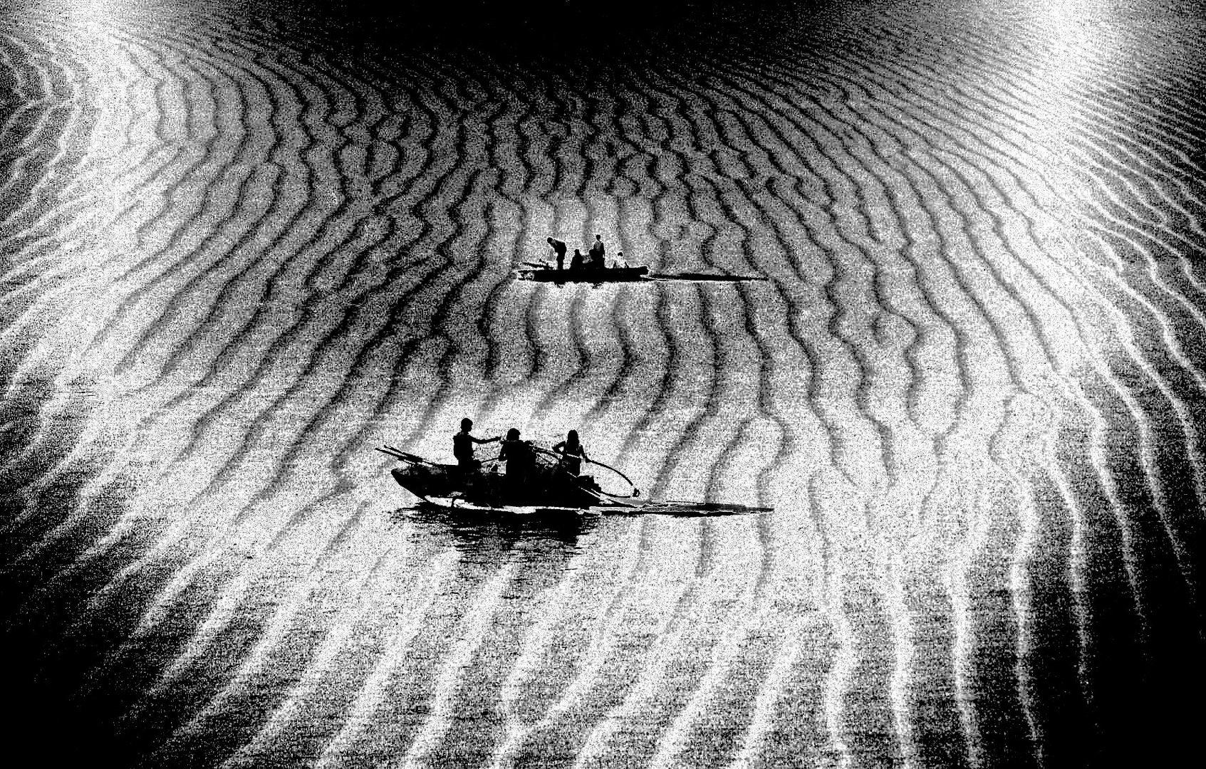 Les fous des sables