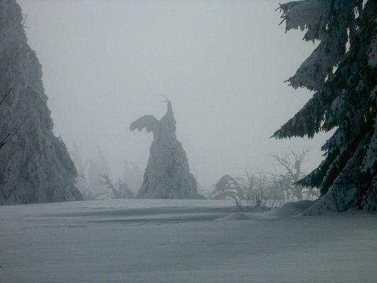 Les géants de neige