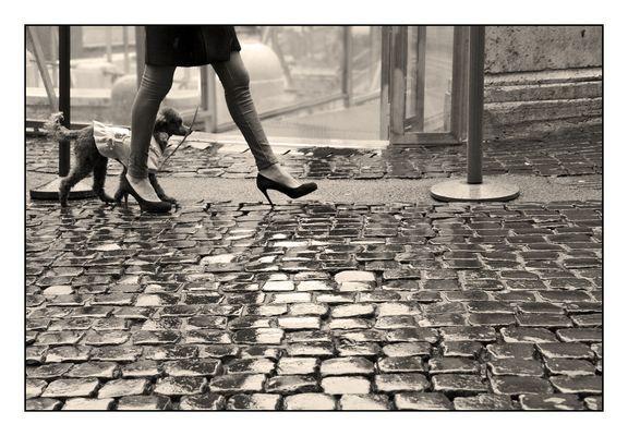 Les jambes des femmes ....