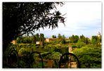 Les jardins de l'Alhambra - Grenade - 7