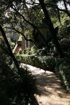 Les Jardins de Marqueyssac 4 (Dordogne)