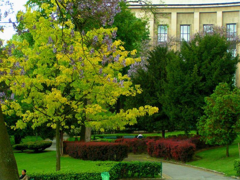 Les jardins du trocadero