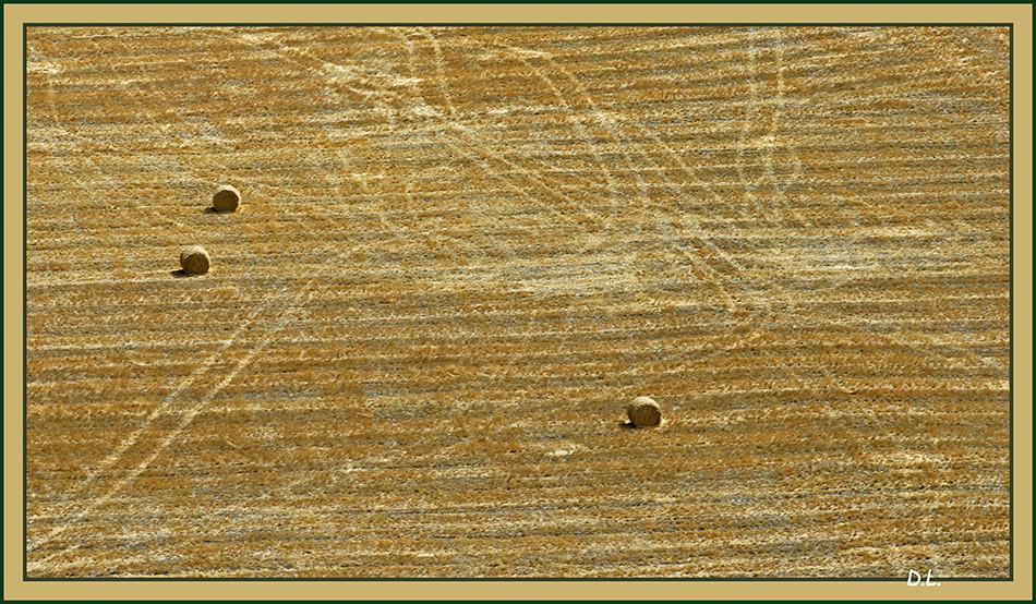 Les lignes de Nazca, au Pérou ???