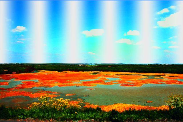 Les marées salants