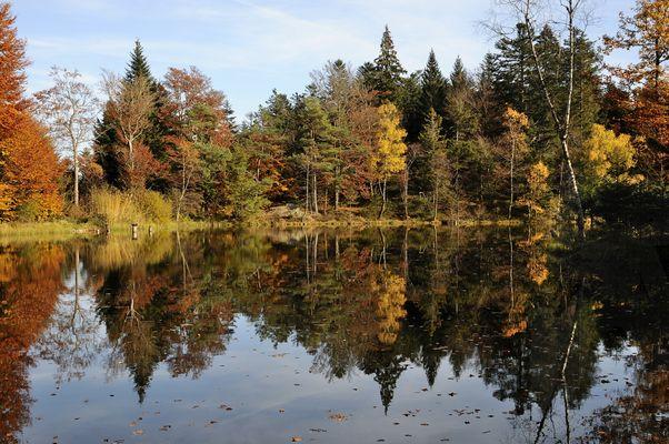 Les Mille Etangs en automne