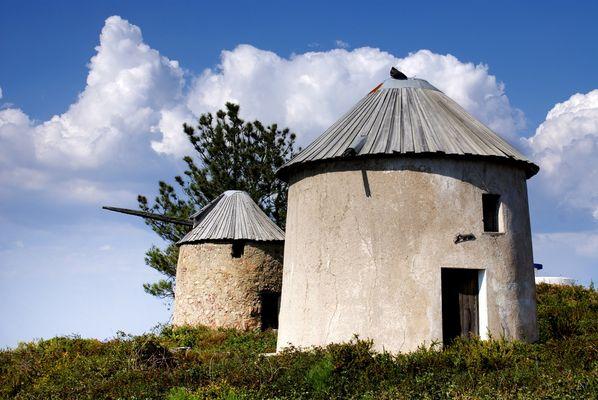 Les moulins ..... ont perdu leurs ailes....