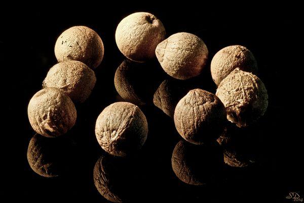 Les neuf grains de poivre .