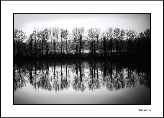 Les ombres du lac  (Ce merveilleux titre est de ma douce Lorel ;-))
