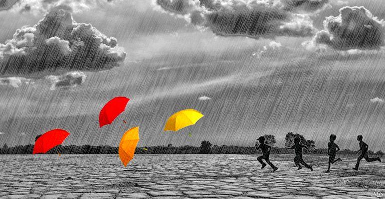 Les parapluies.