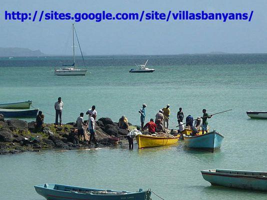 Les pêcheurs de Grand Gaube/ Ile Maurice