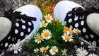 Les pieds en fleurs