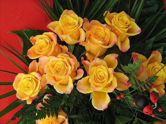 Les Roses 2