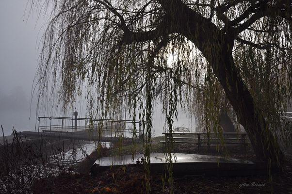les sanglots longs de l'automne