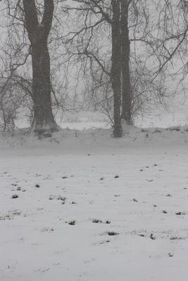 Les talus sous le vent et la neige