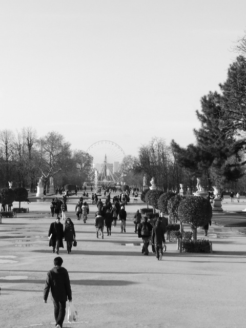 Les Tuileries de Paris