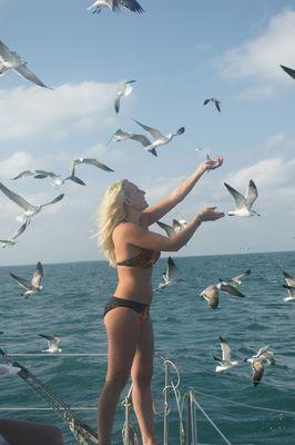 Les vacances ,c'est jouer avec les oiseaux .