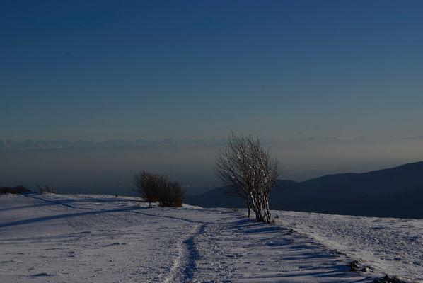 les Vosges avec au loin les Alpes suisses