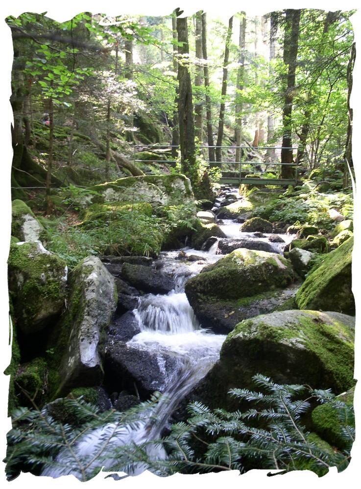 Les Vosges...